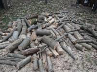 firewood-2-21-2017-11