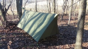 hammock and tarp (2)