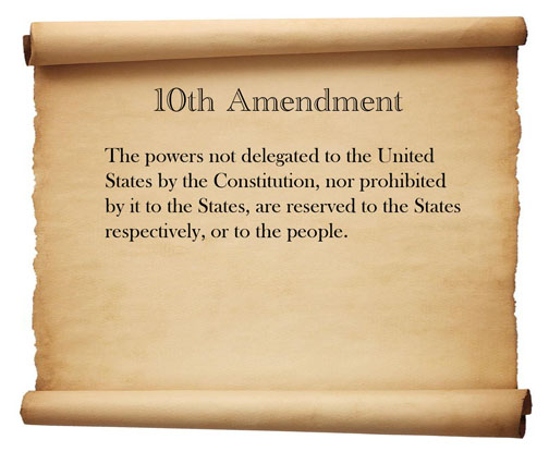 1st-10th Amendments (10)