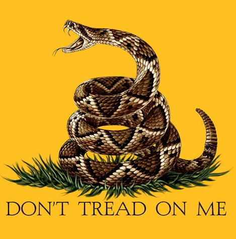 Dont tread on me 1