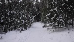 snow hike (5)