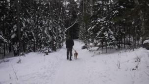 snow hike (6)