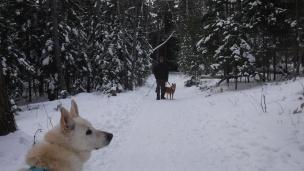 snow hike (7)