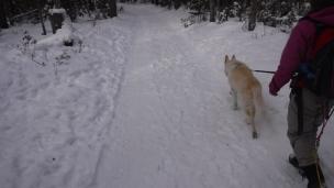 snow hike (9)