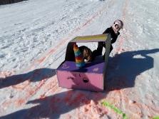 sled race (11)